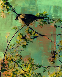 Resting Bird. by rosanna zavanaiu