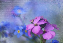 Lila & Blau  by Ursula Pechloff