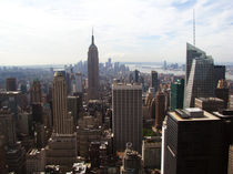 Panoramic NYC IV by Felipe Marazza