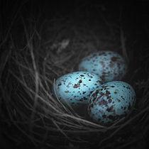 Nest-of-3