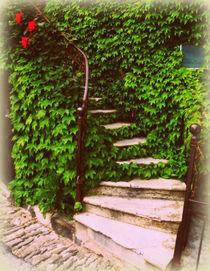 Vine Laden Steps by Lainie Wrightson