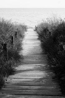 Usedom Walkway by Bianca Baker