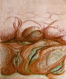 Genesis by florin
