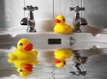 Dsc-14065-ducks-darkened-sharpened