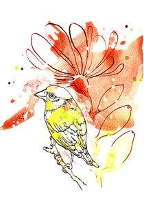 Grünfink von Sabine Israel