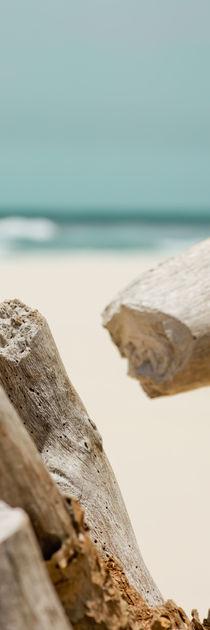 Ocean Panorama 1 - Wood, Holz von Tobias Pfau