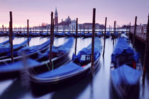 Moored Gondolas in Venice von Martin Williams