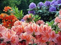 Frühlingsfarben by Eugen Bill
