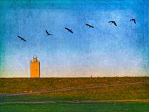 Zugvögel von pahit