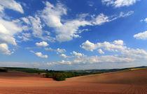 Frühlingsfelder von Wolfgang Dufner
