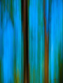 Waldspaziergang no. 25 von arteralfo