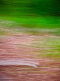 Waldspaziergang no. 29 von arteralfo