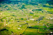 Rural Area by Stas Kulesh