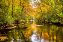 Autumn Mirror by Debra and Dave Vanderlaan