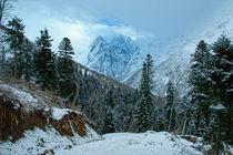 In Caucasus by Asya Kolokolova