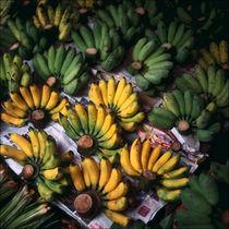 Bananas by Eugene Zhulkov
