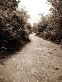 Muddy Trail von Sarah Clark