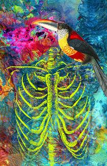 Amazonia by Dragana Nikolic