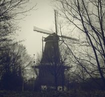 Windmill-westerpark-amsterdam