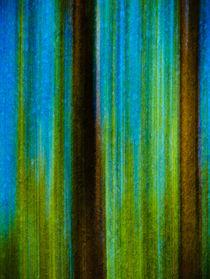 Waldspaziergang 24.1 von arteralfo