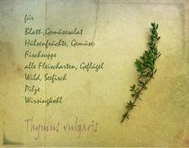 Thymian by Franziska Rullert