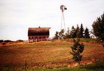 Alberta-farmyard