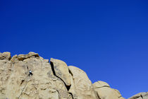 Rock-climber-joshua-tree