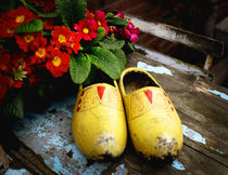 Yellow Dutch Clogs von Kelsey Horne