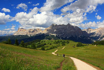 Wandern in den Alpen von Wolfgang Dufner