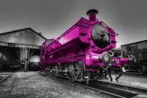 The Pink Pannier by Rob Hawkins