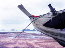 boat in a Thailand beach by Wilma Traldi