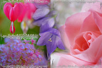 Gladness abounding ~ Summer Flowering by JET Adamson