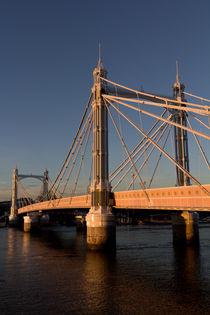 Albert-bridge-day-5-hi