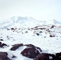 Icy Top of Mt Ruapehu by Stas Kulesh