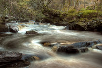 West Beck, Goathland by Martin Williams