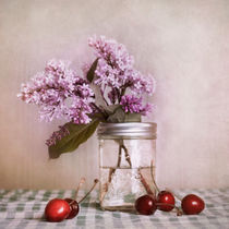 cherries and lilac von Priska  Wettstein