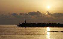 The rising sun by Mark Bunning