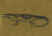 Alligator von freeminds