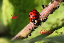 Viel Glück - Good luck by ropo13