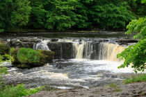 Aysgarth Falls, Yorkshire by Louise Heusinkveld