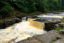 Aysgarth Lower Falls by Louise Heusinkveld