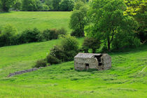Derelict Stone Barn, Yorkshire Dales by Louise Heusinkveld