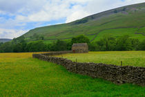 Landscape of the Yorkshire Dales by Louise Heusinkveld