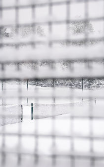 Snow Tennis II by Tom Hanslien
