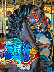 The Eagle and the Horse by Colleen Kammerer