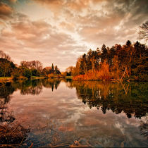 Mirror of Autumn by Martin Crush