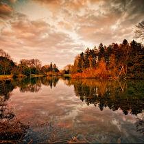 Mirror-of-autumn