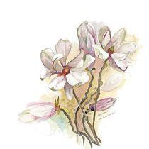 Magnolia von Elisabeth Wakeford