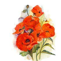 Poppies von Elisabeth Wakeford