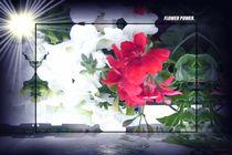 Flower Power. von Bernd Vagt